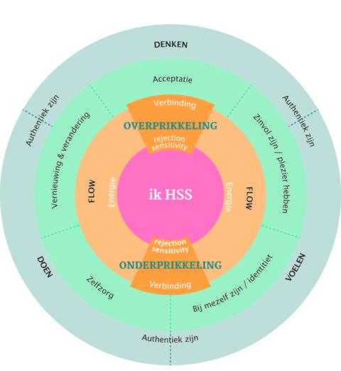 Hoogsenstieve HSS-kompas uit het boek Prikkels bijten niet!